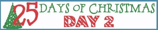 25 Days of Christmas Banner day 2