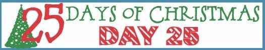 25 Days of Christmas Banner day 25