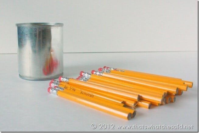 Pencil Cup Can and Pencils
