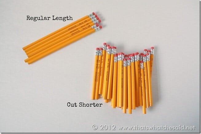 Pencil Cup - Pencils