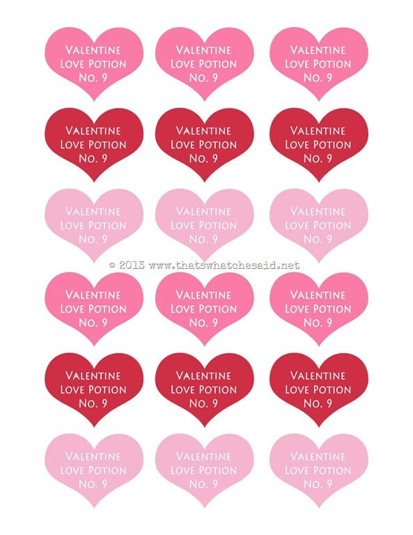 Love Potion Valentine with Free Printable - That\'s What {Che} Said...