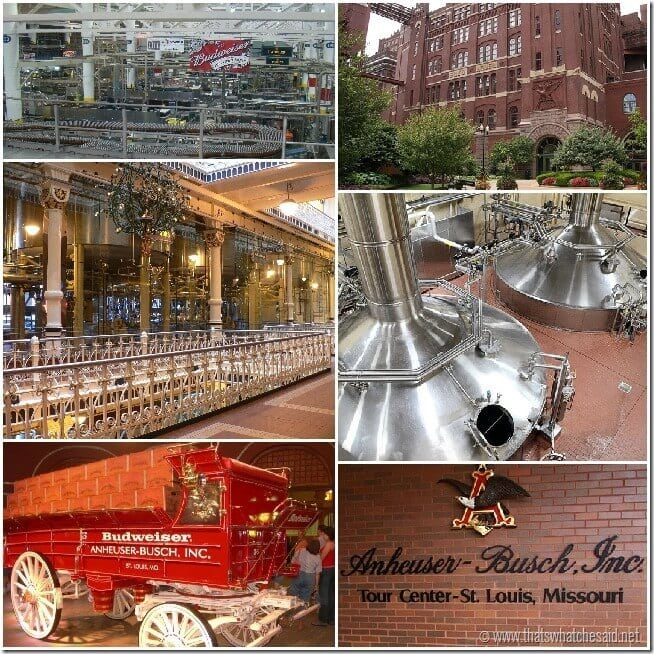 Free things to do in St. Louis, MO