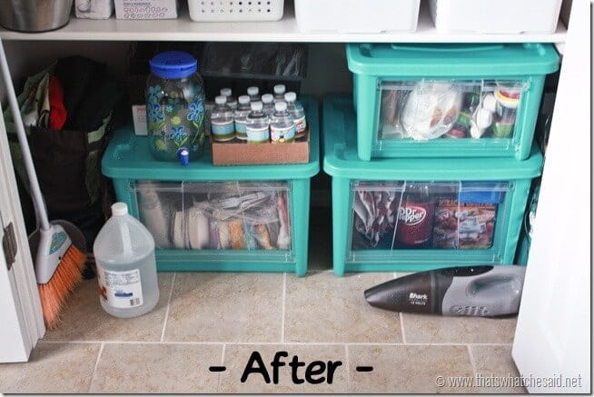 organization-with-all-access-organizers