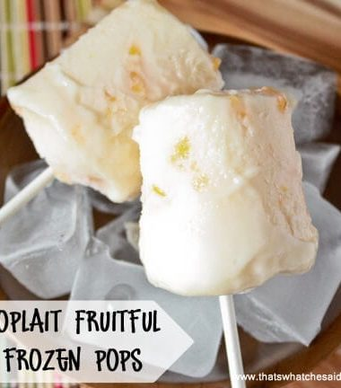 Yogurt Pops at thatswhatchesaid.net