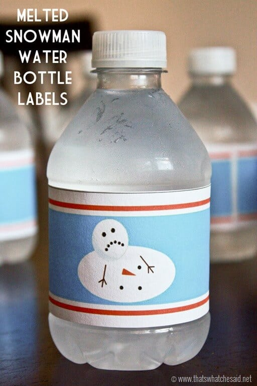 That's What {Che} Said...   Melted Snowman Water Bottle ...