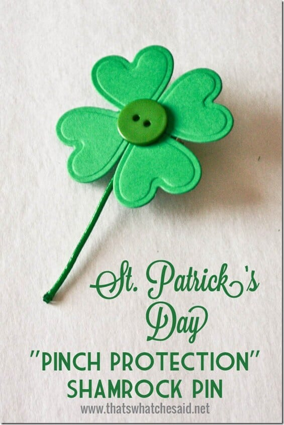 Pinch Protection Shamrock Pin at thatswhatchesaid.net