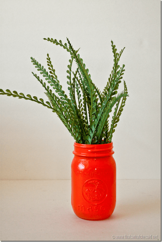 Carrot Mason Jars at thatswhatchesaid.net