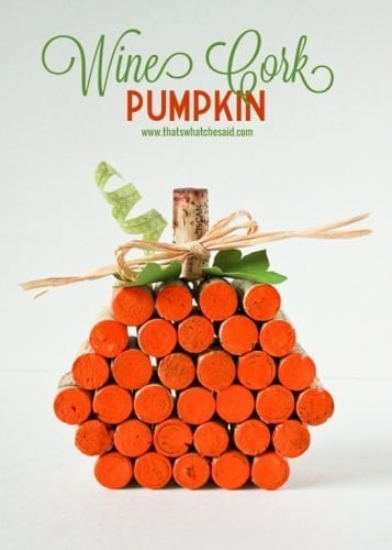 Cork-Pumpkin-Project-at-thatswhatchesaid.com_.jpg