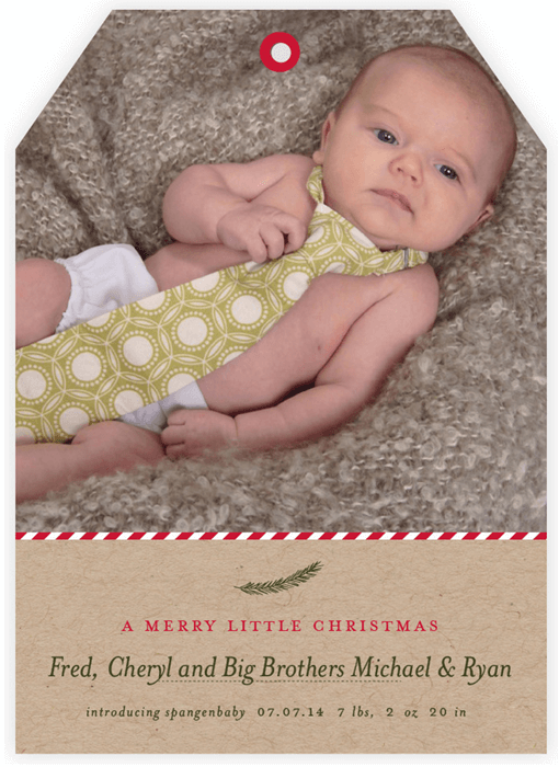 Minted Holiday Card 2