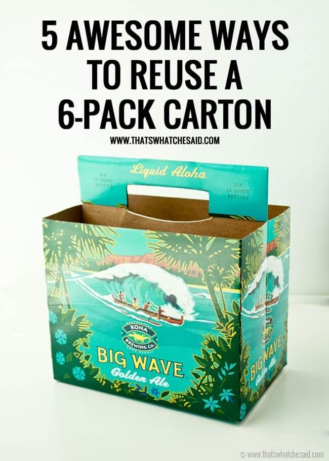 5 Ways to Reuse a 6 Pack Carton at thatswhatchesaid.com