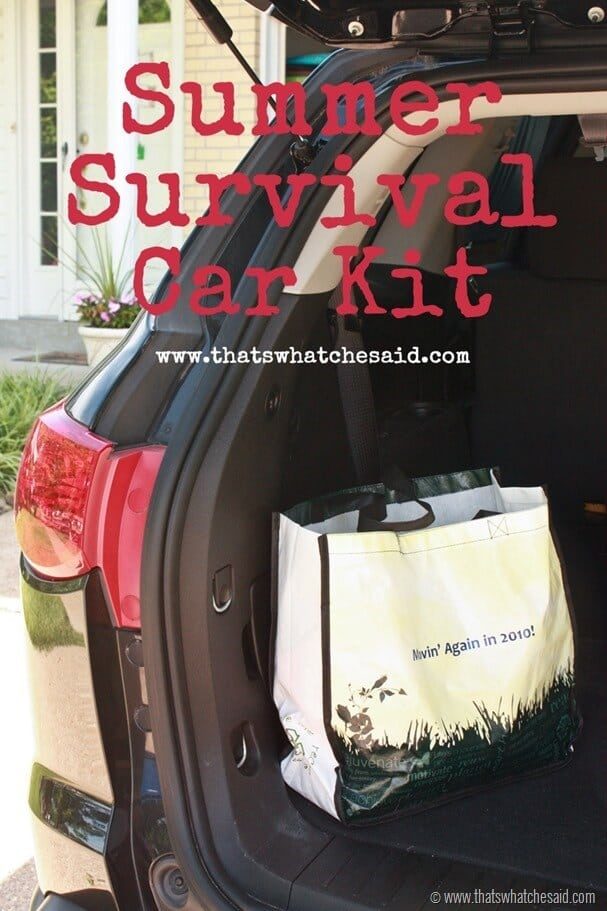 Summer Survival Car Kit at thatswhatchesaid.com