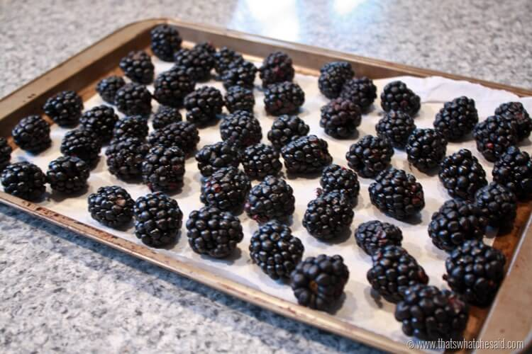 Easiest Way to Freeze Berries at thatswhatchesaid.com