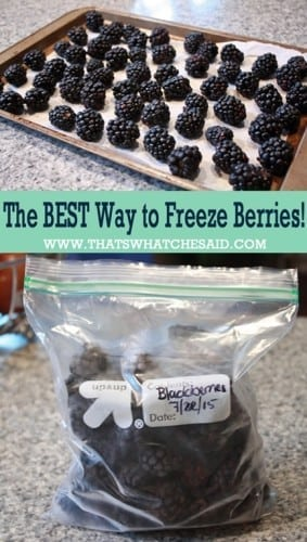 The-Best-Way-to-Freeze-Berries-at-thatswhatchesaid.com_.jpg