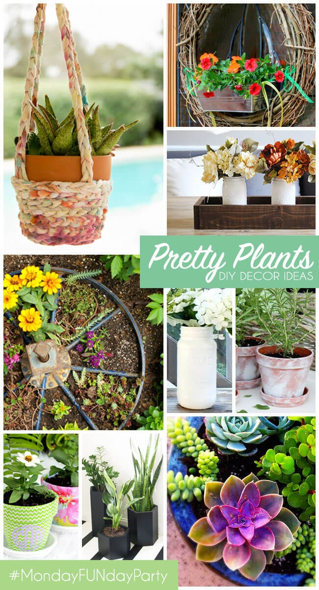 10 Creative Ways to Pot Plants