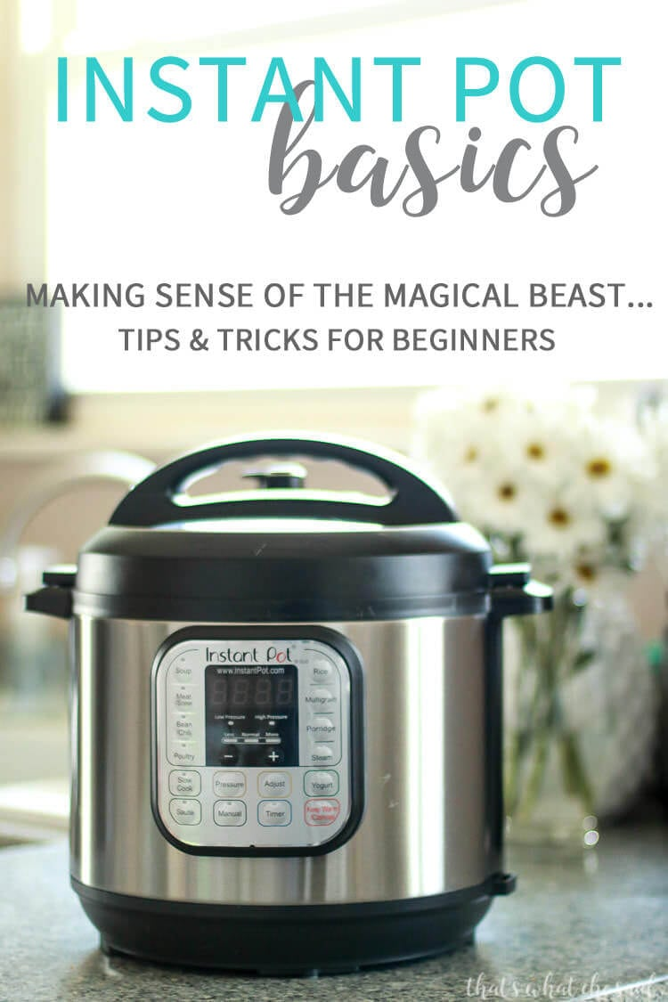 Instant Pot Basics - Tips for Beginners