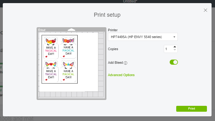 Print Setup Screen in Cricut Design Space for Print then Cut