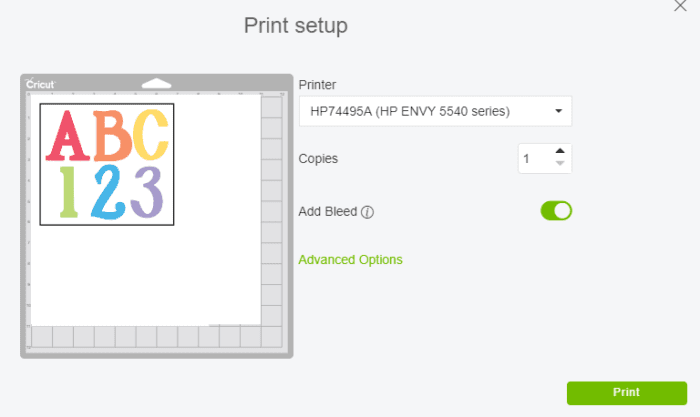 Print Setup Screen on Cricut Design Space for Print then Cut Feature