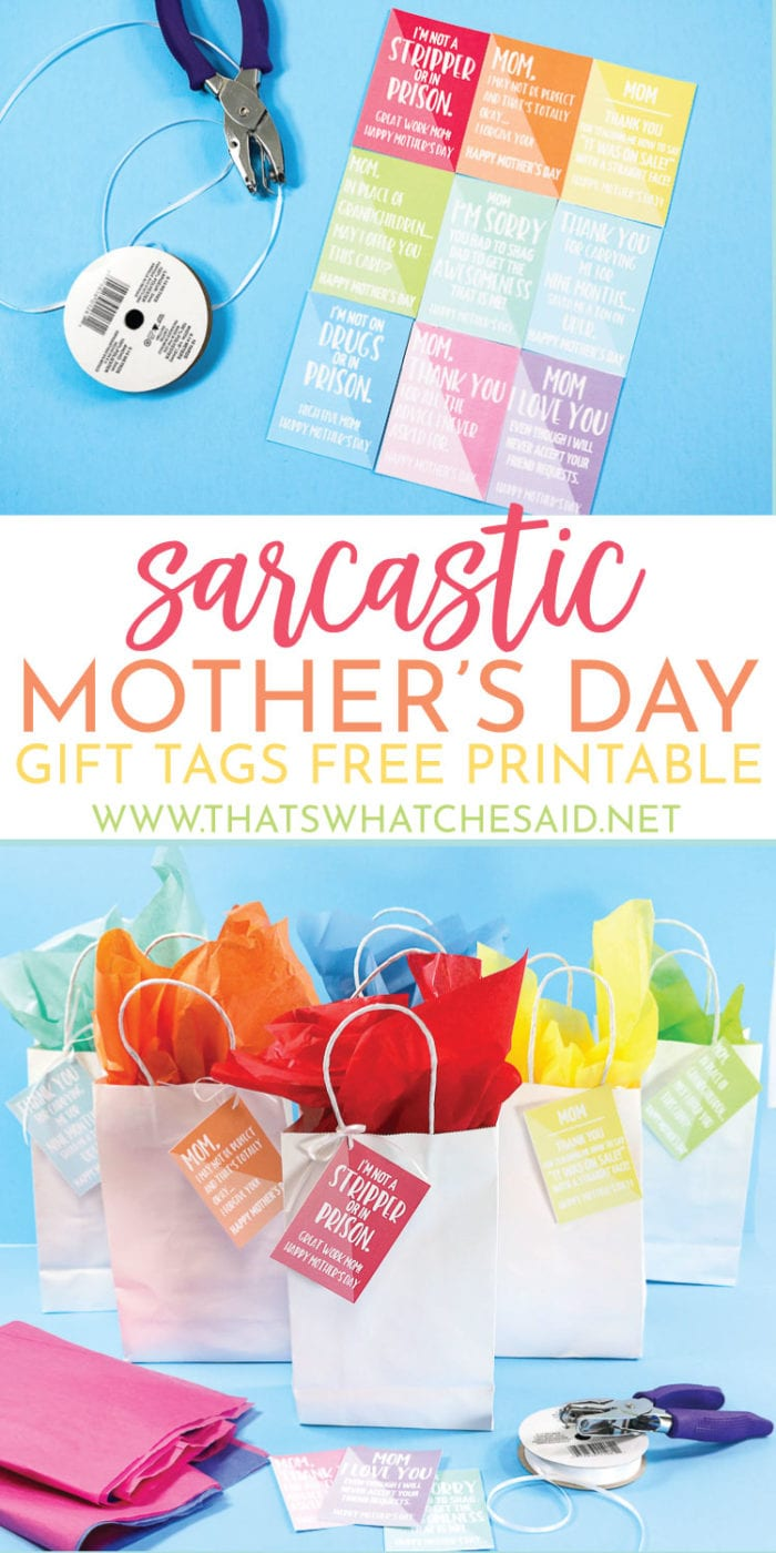Sarcastic & Funny Mother's Day Gift Tags perfect for the Mom who has the sense of humor!  Download yours for free and get to laughing!  #freeprintable #printable #mothersday
