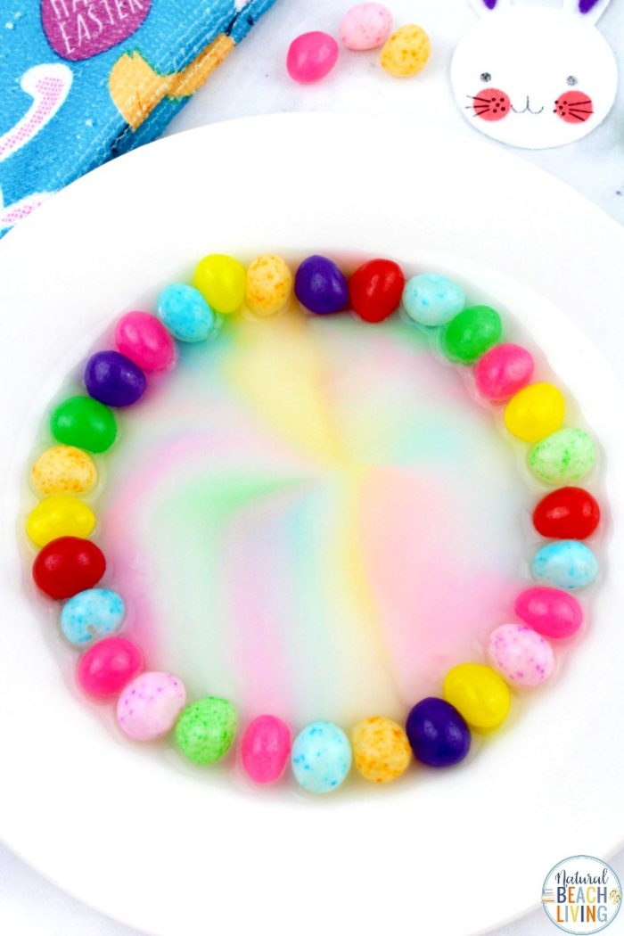 Science experiment making rainbow pattern out of jelly beans and water.
