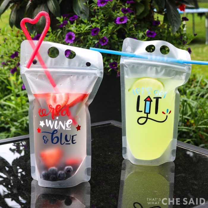 Reusable rink pouches with adult beverages