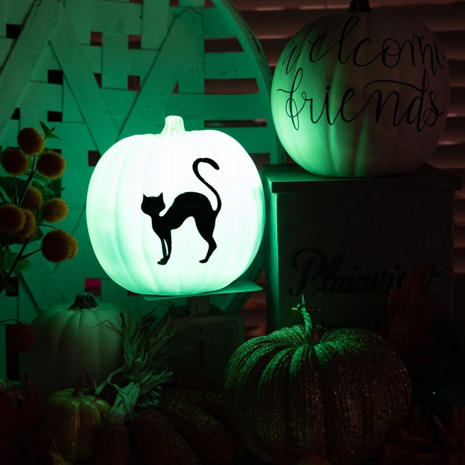 Pumpkin painted in glow in the dark paint with a black cat in black vinyl