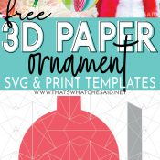 Pin for post. Image of 3D ormanent on top and then the vector depiction of the svg file on the bottom